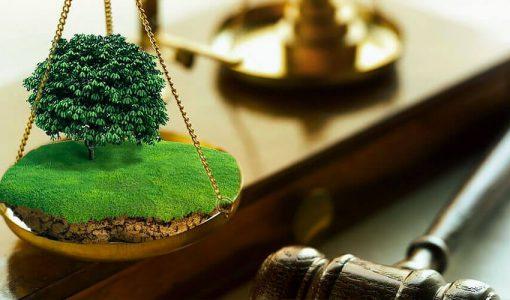 Досрочное расторжение договора аренды земельного участка по причине его неиспользования по инициативе местных властей